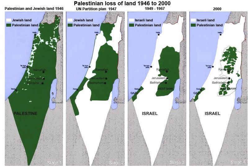 palestina up